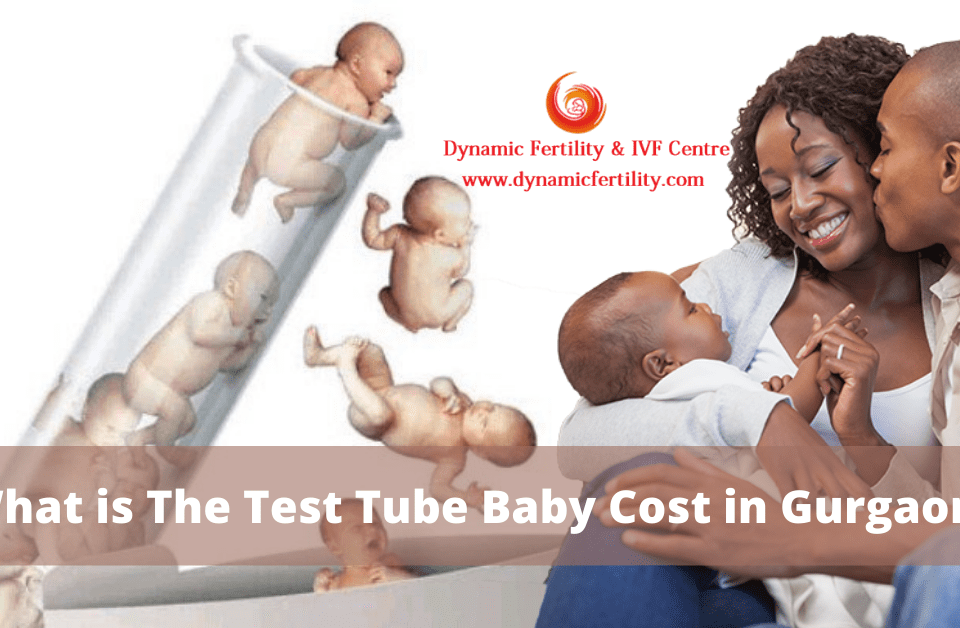 Test Tube Baby Cost in Gurgaon